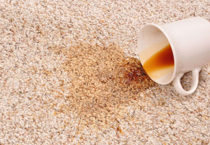 Carpet Stain Removal by Quality Swan Cleaning Services